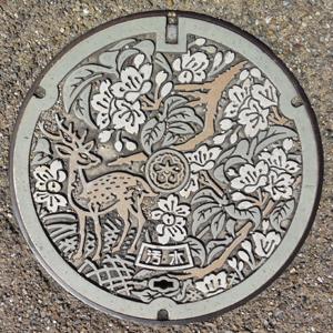 奈良の鹿blog01