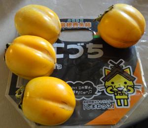 島根西条柿こづちblog01