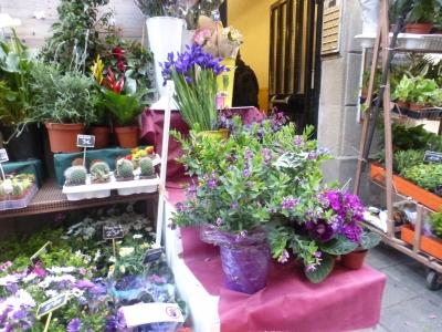 バロセロナの花屋さん 2016 3・23