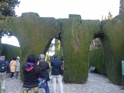 糸杉の門 2016 3・25