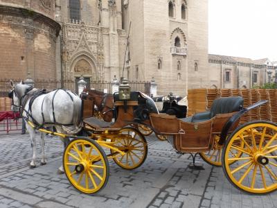セビーリャ大聖堂⑥ 馬車 2016 3・26
