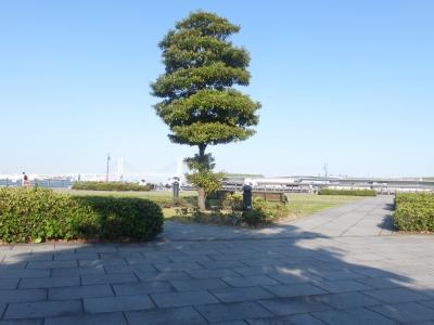横浜景色⑤ 2016 5・12