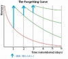 forgetteing curve with reviews