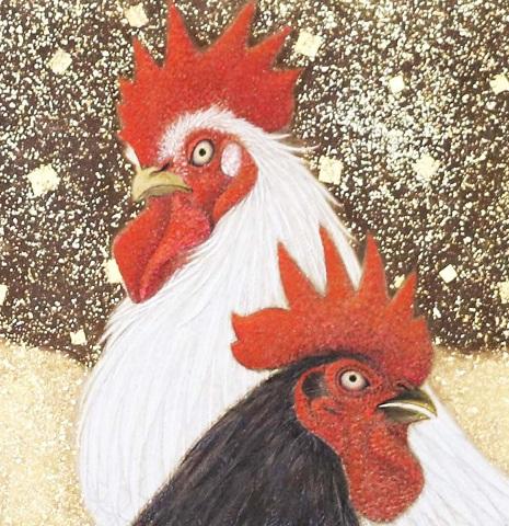 白鶏黒鶏1d