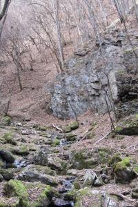 161210大猿山~白髪岩 (53)s
