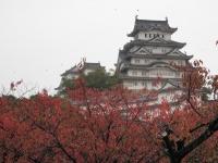 091111姫路城 (6)60