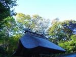 大洗磯崎神社