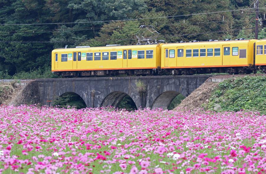 2016-10-22三岐鉄道の北勢線T84A6567