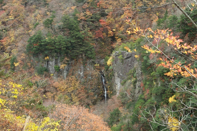 鳥渡谷、大鯛滝、2