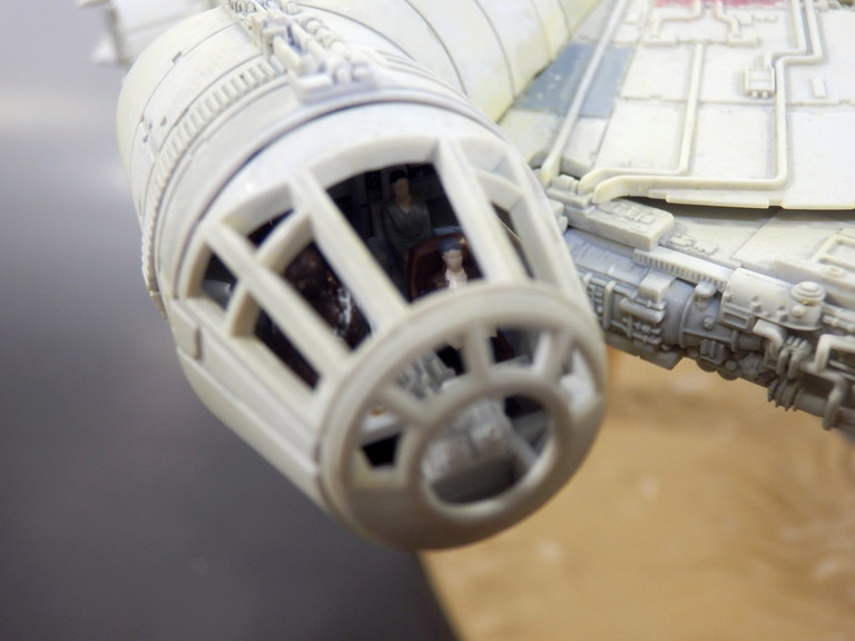 falcon_009.jpg