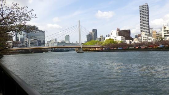 造幣局向かいの川(大川)(2016年4月撮影)