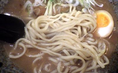 綿麺 和風とんこつ(2016年12月)(麺のアップ)