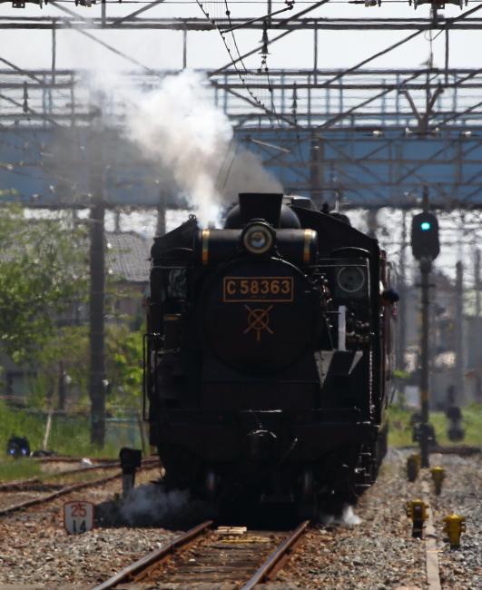 BX1D6008.jpg
