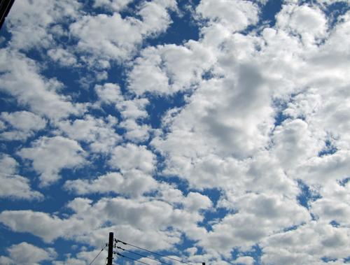 今朝の雲−1