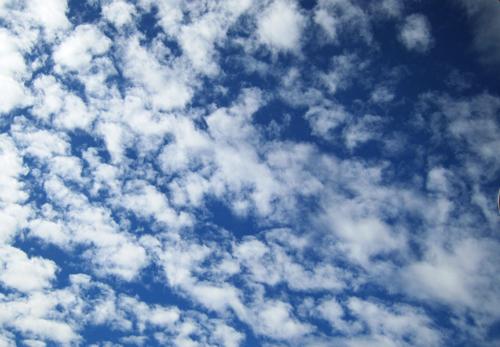 今朝の雲−2