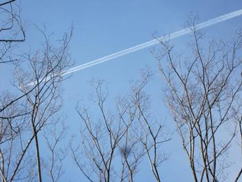 _青空と飛行機雲