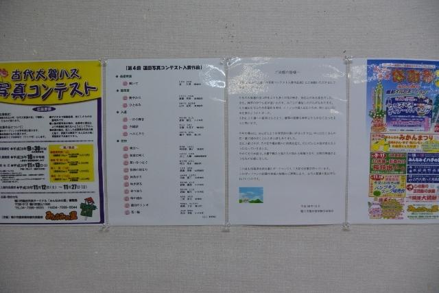 DSC_0518 (640x427)