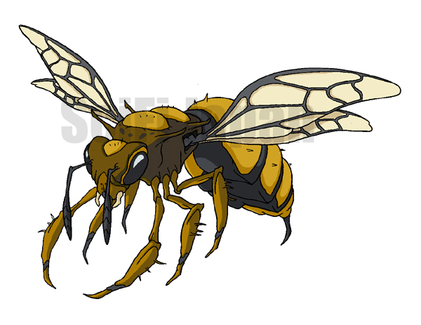 蜂に刺された場合は小便で治そうとは思ってはいけない