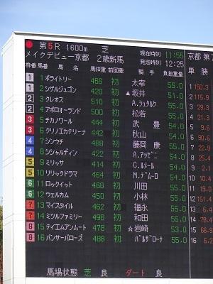 京都5R新馬戦