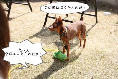 2016_03_21_9999_46.jpg
