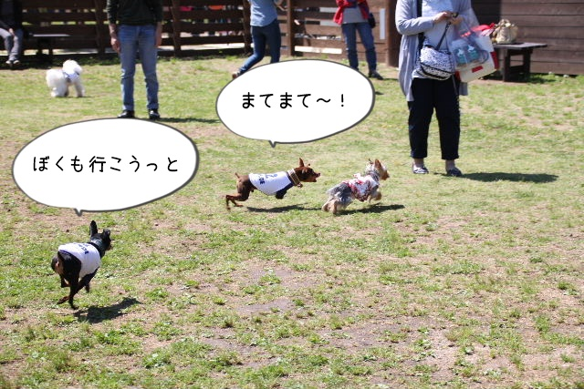 2016_04_29_9999_21.jpg