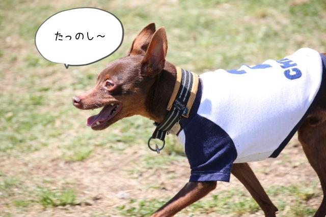 2016_04_29_9999_24.jpg