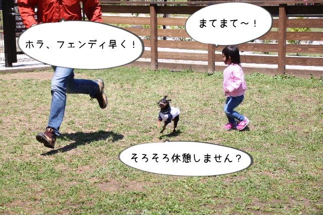 2016_04_29_9999_25.jpg