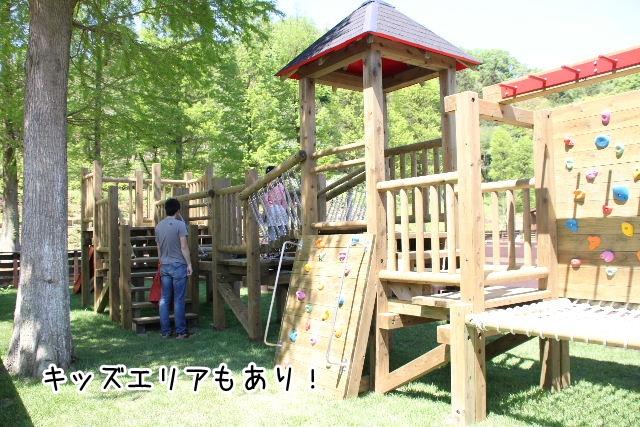 2016_04_29_9999_31.jpg