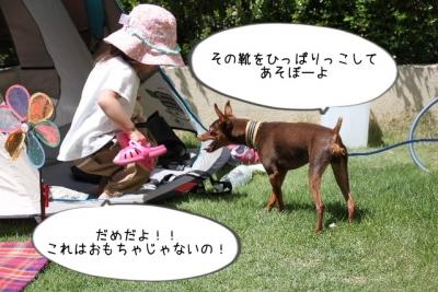 2016_05_05_9999_24.jpg