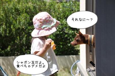 2016_05_05_9999_48.jpg