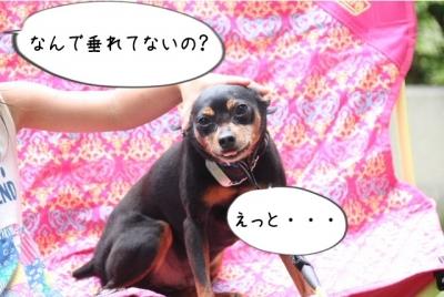 IMG_7124.jpg