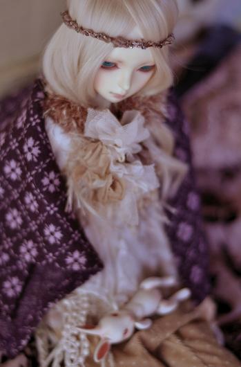 DSC_0114_20161025091511077.jpg