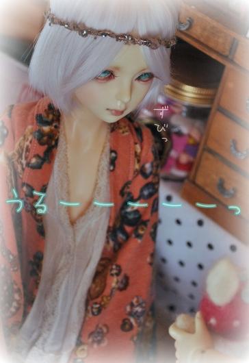 DSC_0366_20160925154622e1d.jpg