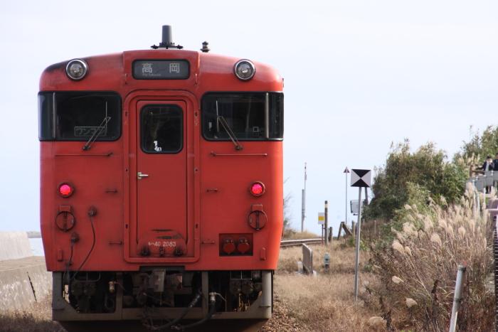 151206-noto-17.jpg