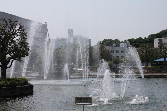 160520-mikasa-09.jpg