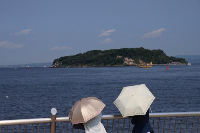 160520-mikasa-12.jpg