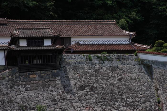 160618-fukiya-39.jpg
