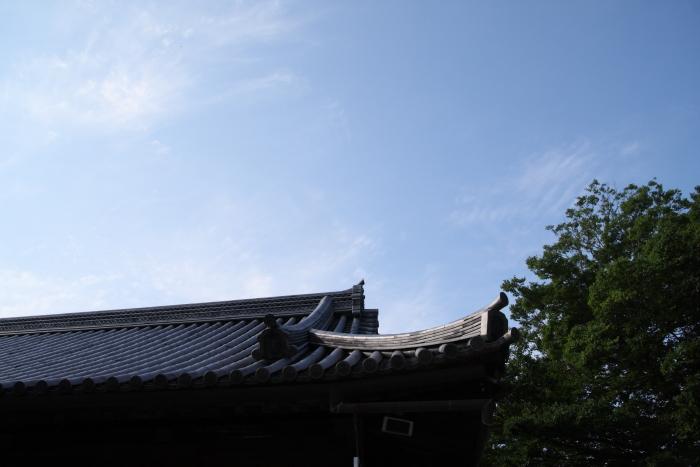 160618-jinja-07.jpg