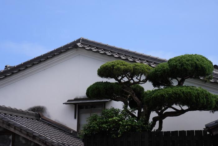 160618-katsuya-15.jpg