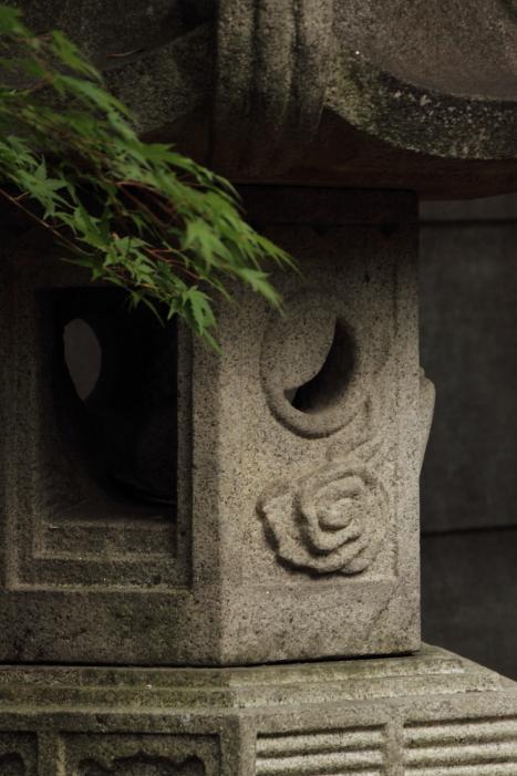 160814-shira-06.jpg