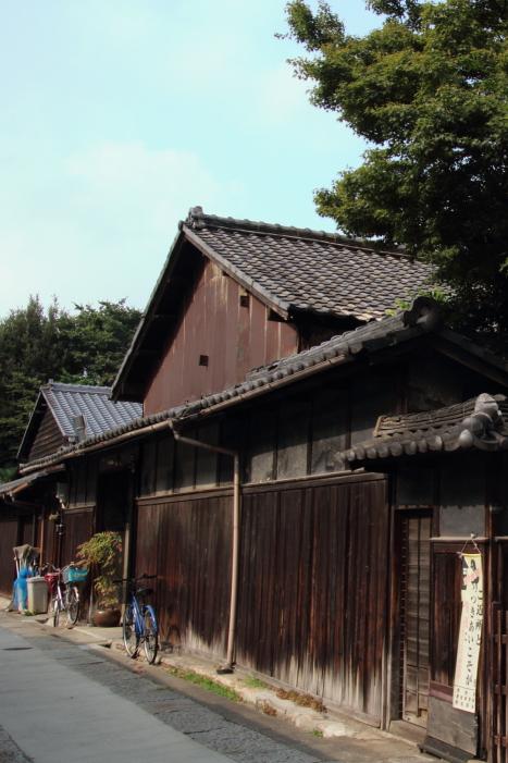 160814-shira-16.jpg