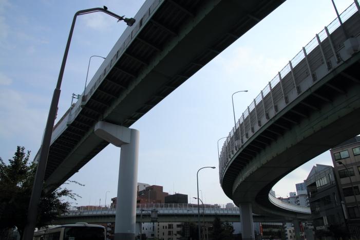 160814-shira-20.jpg