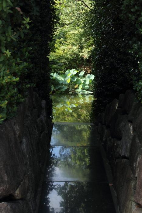 160903-garden-01.jpg