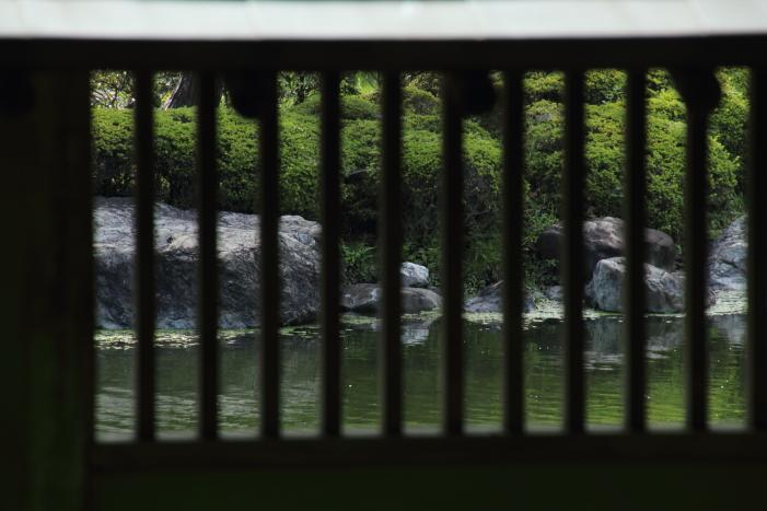 160903-garden-16.jpg