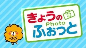 kyonophoto.jpg