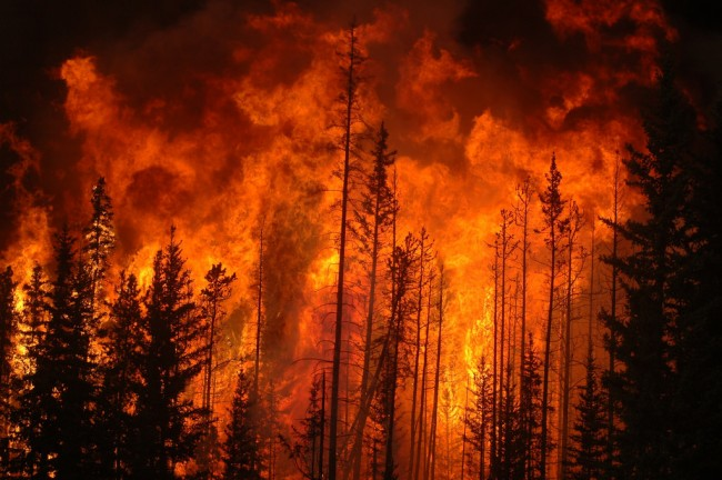 Fort-McMurray-Residents-Airlifted-to-Escape-Wildfire-650x432.jpg