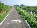 DSC_0003 (640x480)