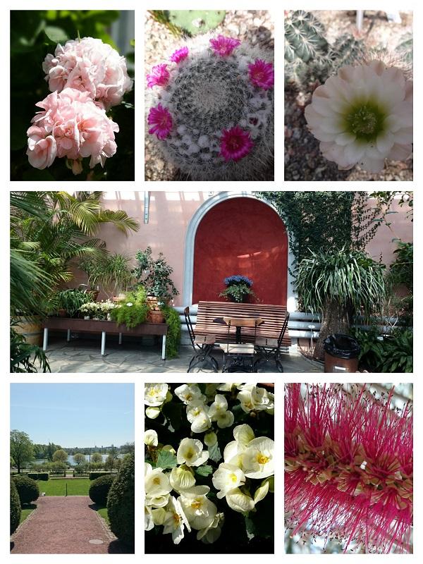 冬の庭園 4b