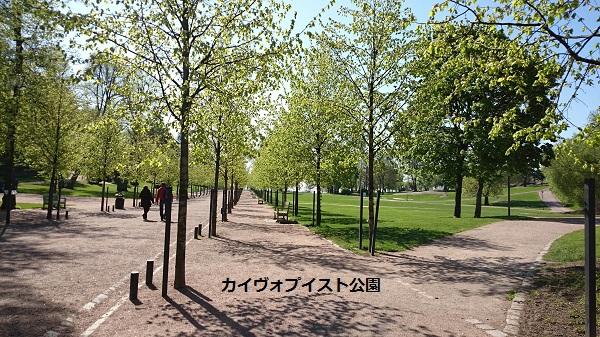 カイヴォプイスト公園b