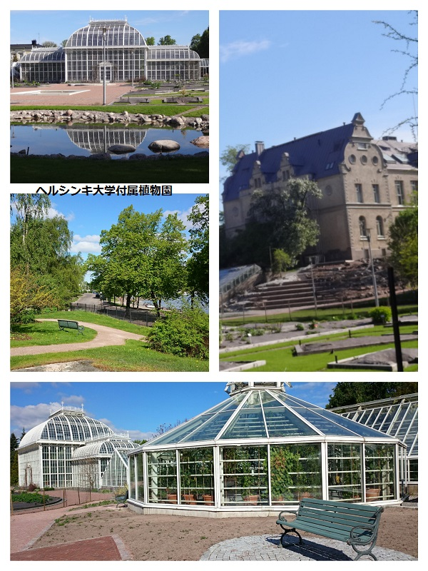 大学植物園b